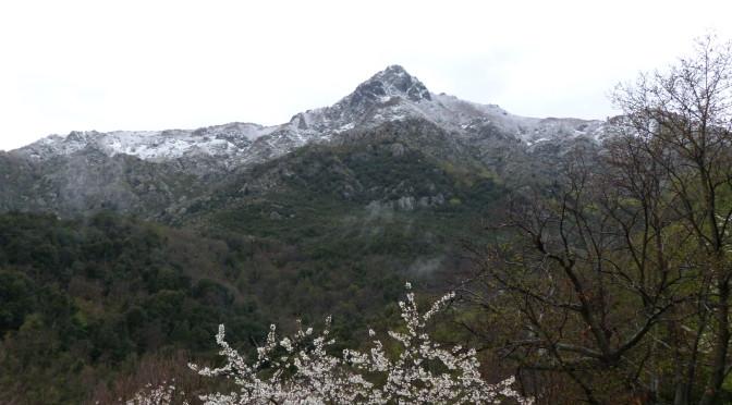 L'hiver et le printemps se melangent
